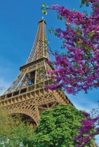 See the sights in Paris with AmaWaterways.  Image courtesy of AmaWaterways