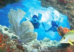 Shore Excursions Group Snorkling